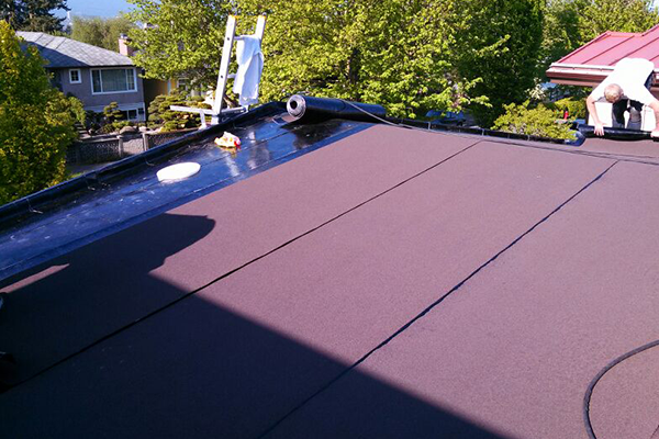 our roofing contractors are installing torch on roofing on one of the house in Burnaby